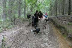 2020-08-02-Haidstein-Julia_2020-08-02-Haidstein-Bobby-Charly-Hundeschule-Souldog-1271597046122699